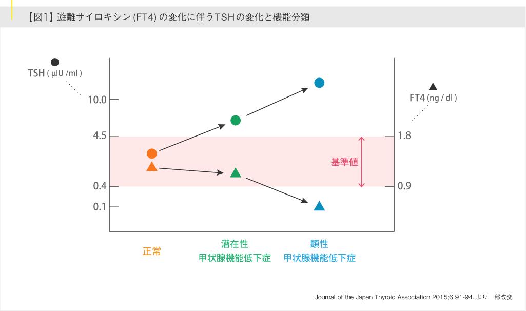 遊離サイロキシン(FT4)の変化に伴うTSHの変化と機能分類